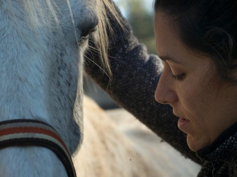 ostéopathe cheval